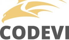 CODEVI Consultoria e Software